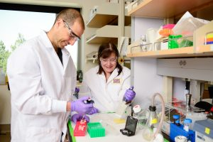 Amir Kol and Naomi Walker with the Veterinary Institute for Regenerative Cures.