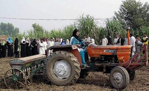 Agriculture is the largest sector of Pakistan's economy.